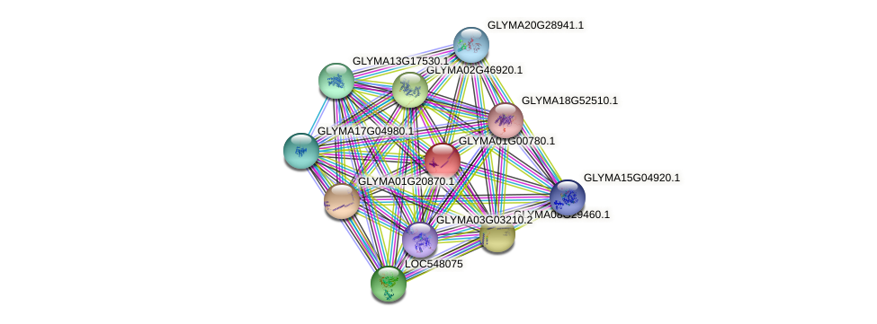 GLYMA01G00780.1 protein (Glycine max) - STRING interaction network