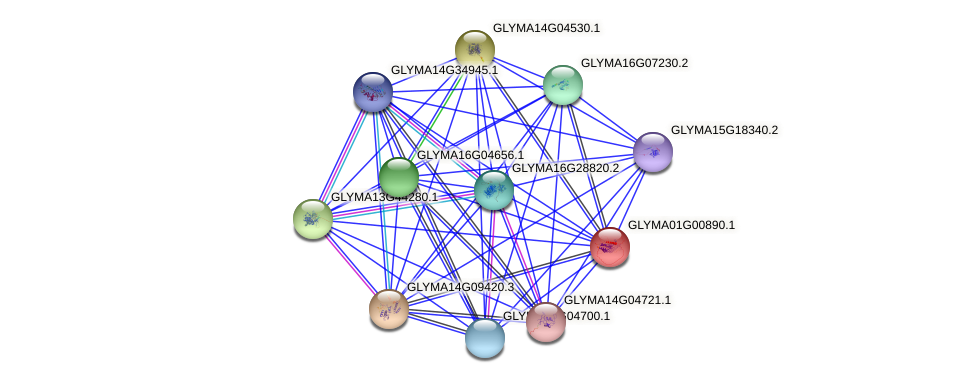 GLYMA01G00890.1 protein (Glycine max) - STRING interaction network