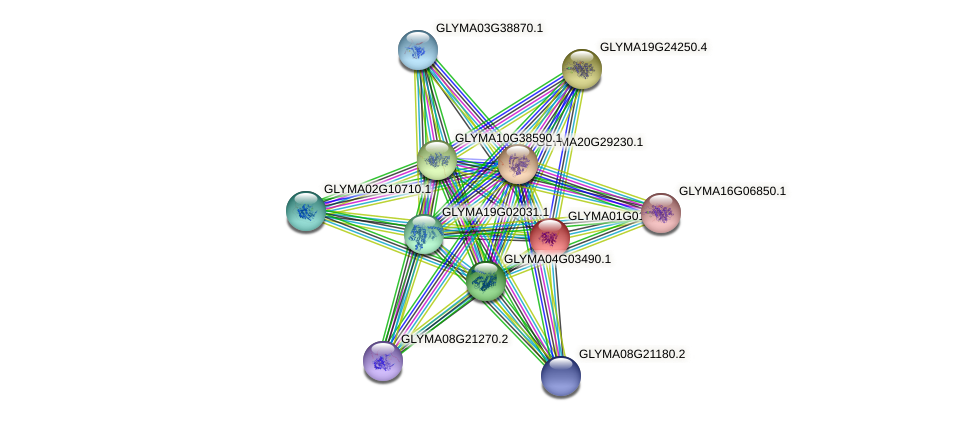 GLYMA01G01070.1 protein (Glycine max) - STRING interaction network