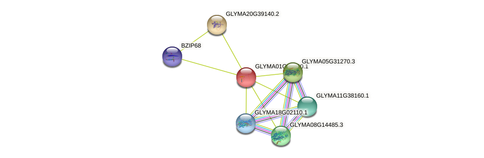 GLYMA01G01440.1 protein (Glycine max) - STRING interaction network