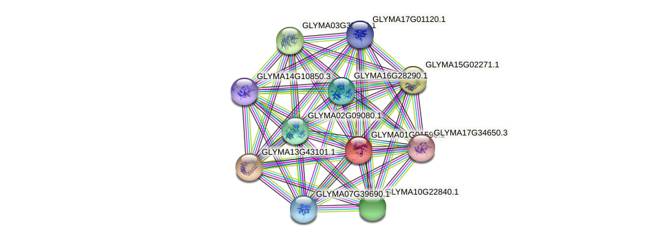 GLYMA01G01590.1 protein (Glycine max) - STRING interaction network