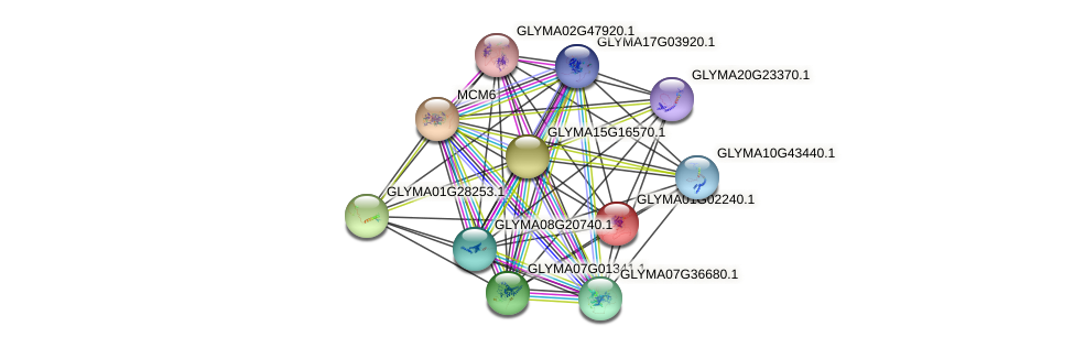 GLYMA01G02240.1 protein (Glycine max) - STRING interaction network