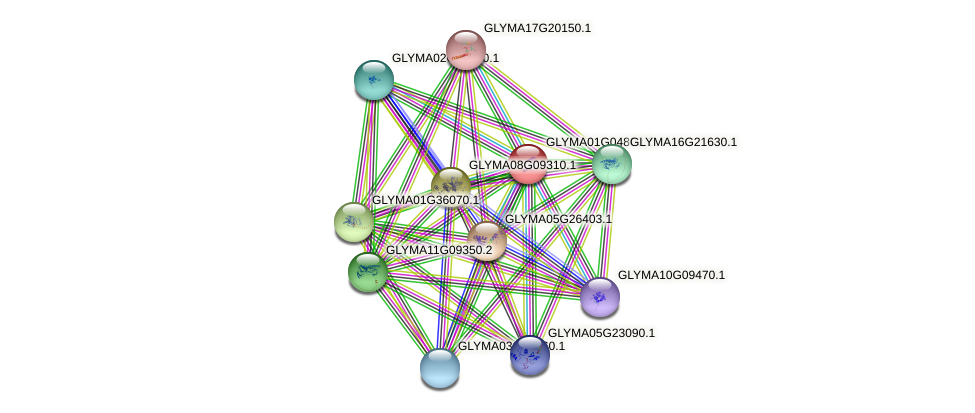 GLYMA01G04800.1 protein (Glycine max) - STRING interaction network