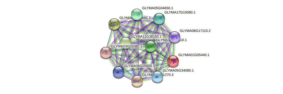GLYMA01G05440.1 protein (Glycine max) - STRING interaction network