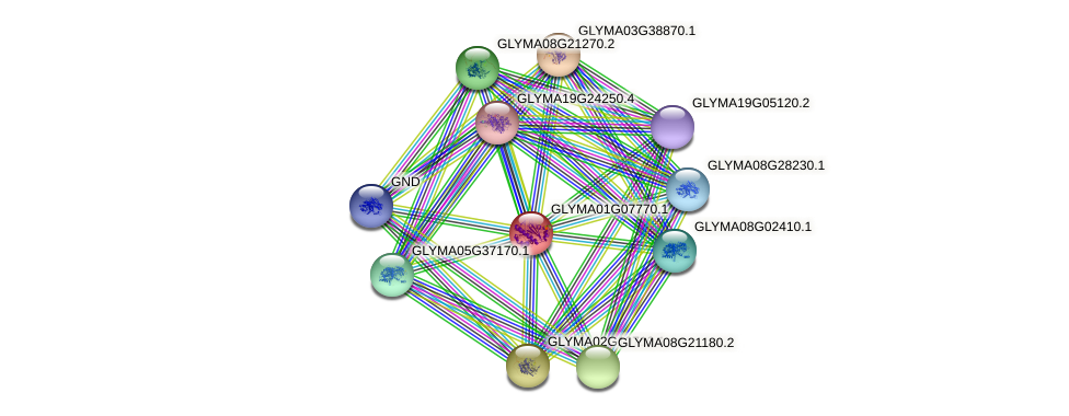 GLYMA01G07770.1 protein (Glycine max) - STRING interaction network