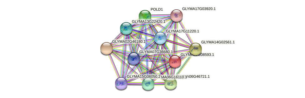 GLYMA01G08593.1 protein (Glycine max) - STRING interaction network