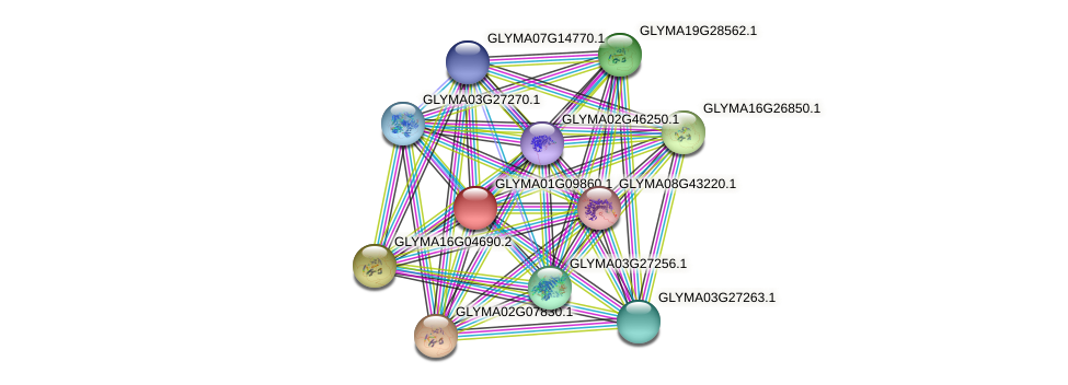 GLYMA01G09860.1 protein (Glycine max) - STRING interaction network