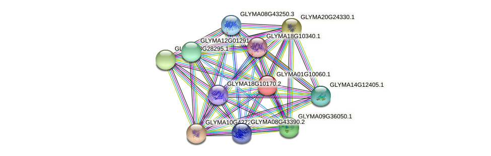 GLYMA01G10060.1 protein (Glycine max) - STRING interaction network