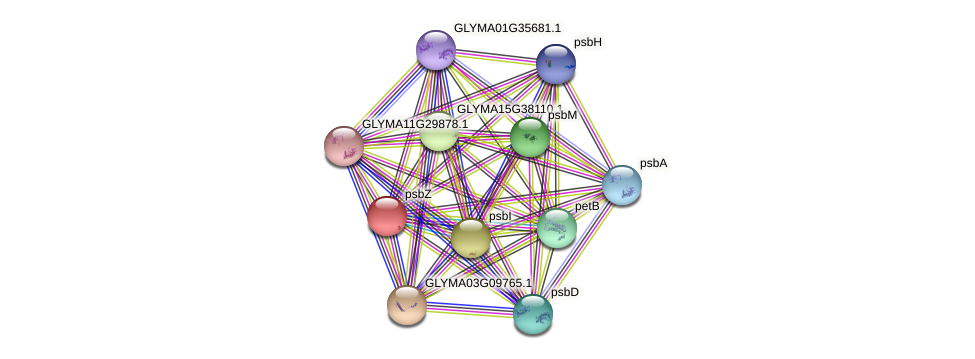 psbZ protein (Glycine max) - STRING interaction network