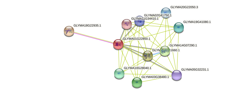 GLYMA01G22850.1 protein (Glycine max) - STRING interaction network