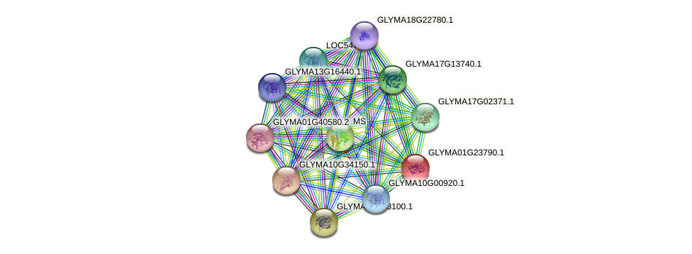 GLYMA01G23790.1 protein (Glycine max) - STRING interaction network