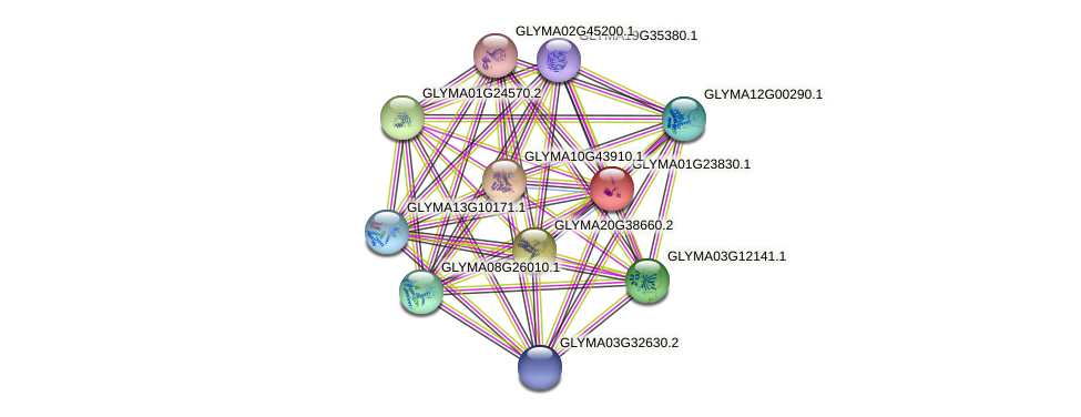GLYMA01G23830.1 protein (Glycine max) - STRING interaction network