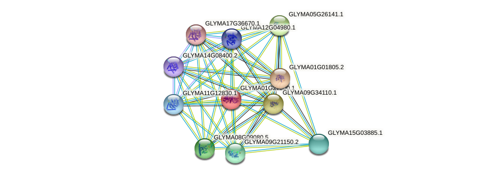 GLYMA01G27900.1 protein (Glycine max) - STRING interaction network