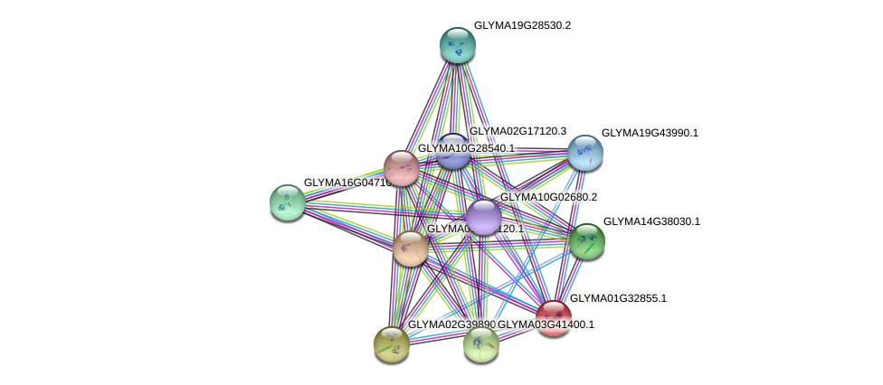 GLYMA01G32855.1 protein (Glycine max) - STRING interaction network