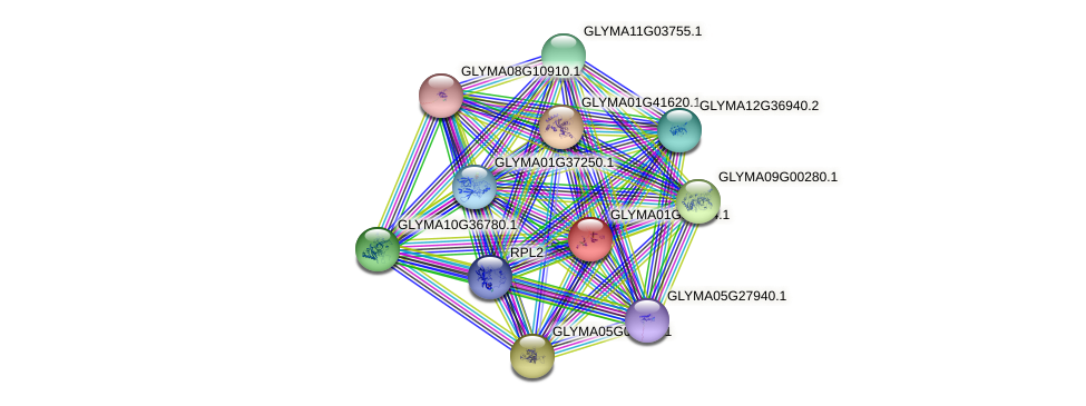GLYMA01G33724.1 protein (Glycine max) - STRING interaction network