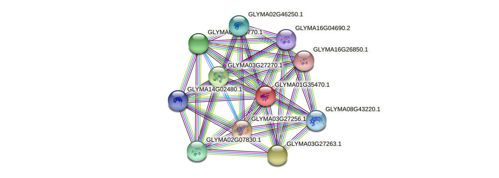 GLYMA01G35470.1 protein (Glycine max) - STRING interaction network