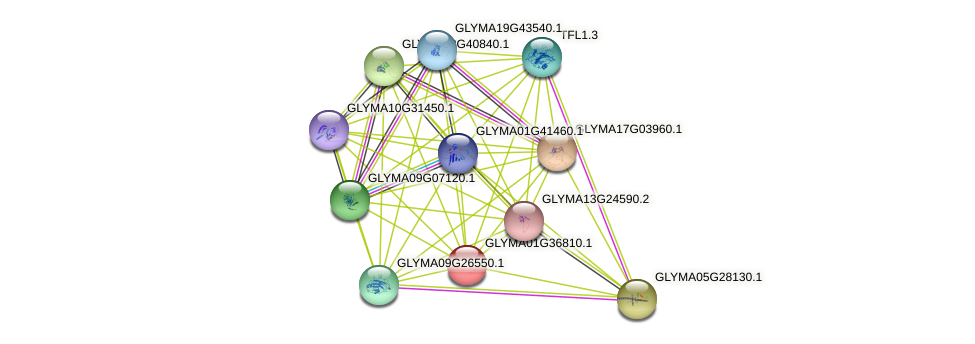 GLYMA01G36810.1 protein (Glycine max) - STRING interaction network