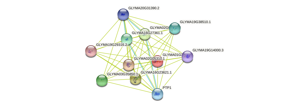 GLYMA01G36960.1 protein (Glycine max) - STRING interaction network