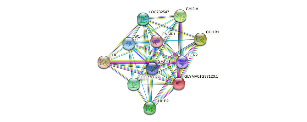 GLYMA01G37120.1 protein (Glycine max) - STRING interaction network