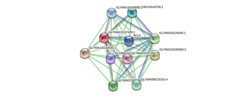 GLYMA01G37430.1 protein (Glycine max) - STRING interaction network