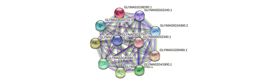 GLYMA01G38280.1 protein (Glycine max) - STRING interaction network