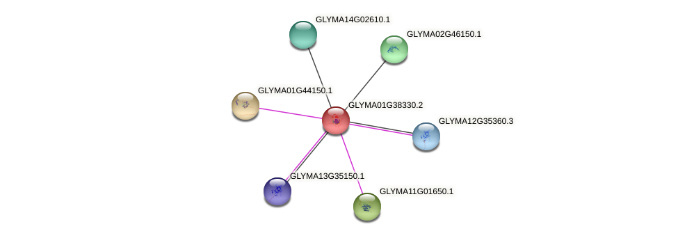 GLYMA01G38330.2 protein (Glycine max) - STRING interaction network