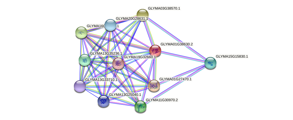 GLYMA01G38630.2 protein (Glycine max) - STRING interaction network