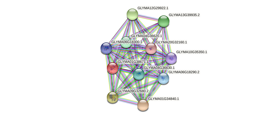 GLYMA01G38671.1 protein (Glycine max) - STRING interaction network