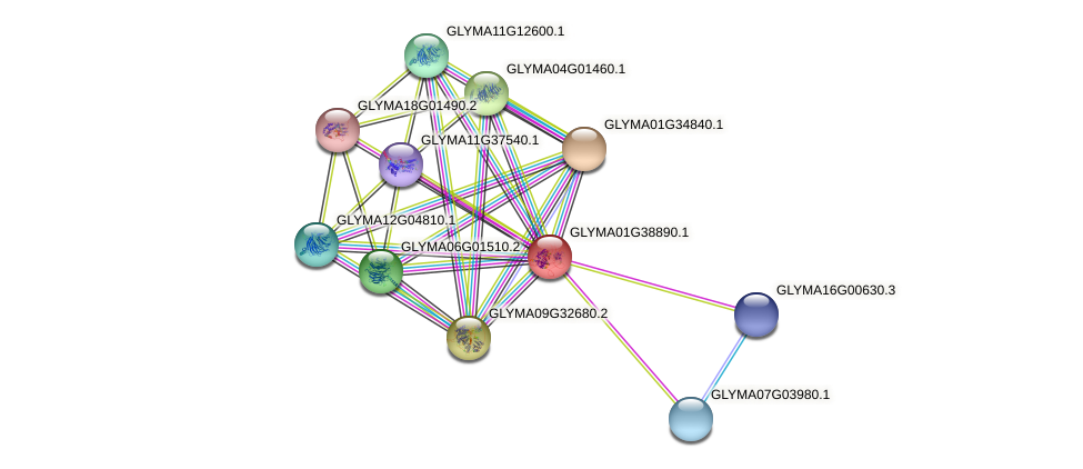 GLYMA01G38890.1 protein (Glycine max) - STRING interaction network