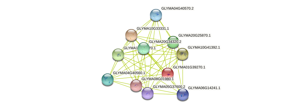 GLYMA01G39270.1 protein (Glycine max) - STRING interaction network