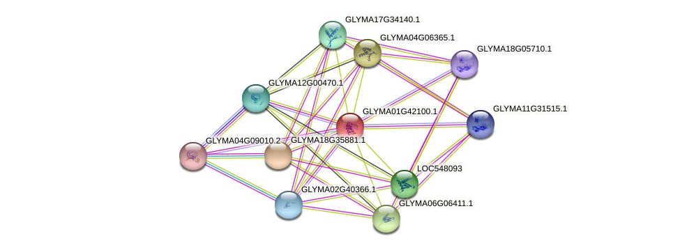 GLYMA01G42100.1 protein (Glycine max) - STRING interaction network