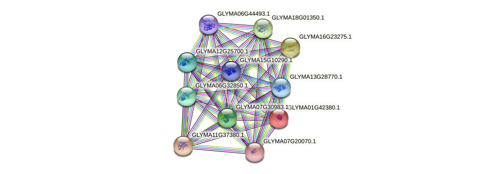 GLYMA01G42380.1 protein (Glycine max) - STRING interaction network