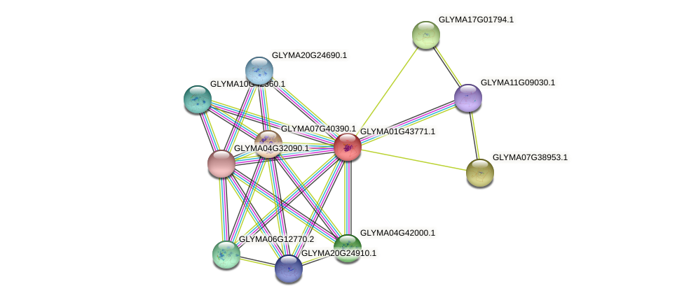 GLYMA01G43771.1 protein (Glycine max) - STRING interaction network