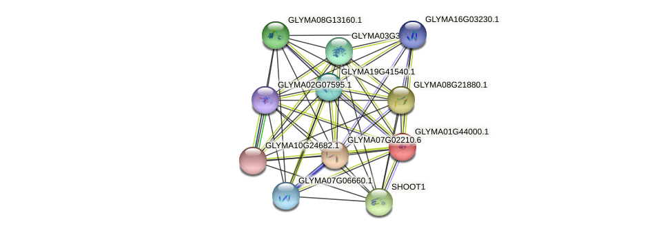 GLYMA01G44000.1 protein (Glycine max) - STRING interaction network