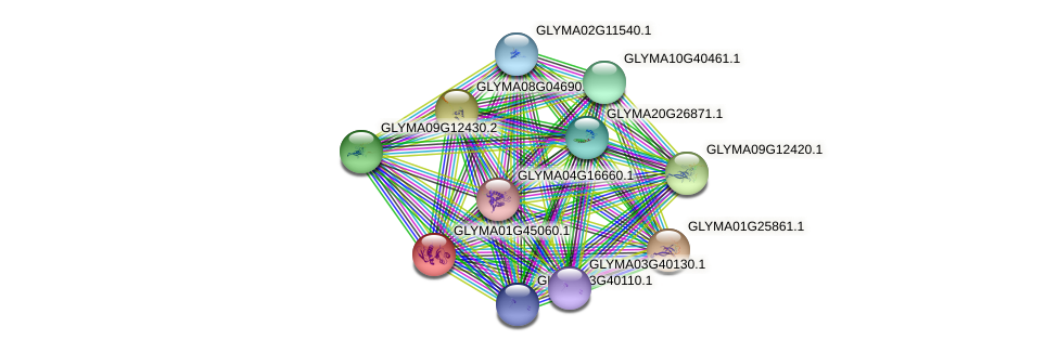 GLYMA01G45060.1 protein (Glycine max) - STRING interaction network