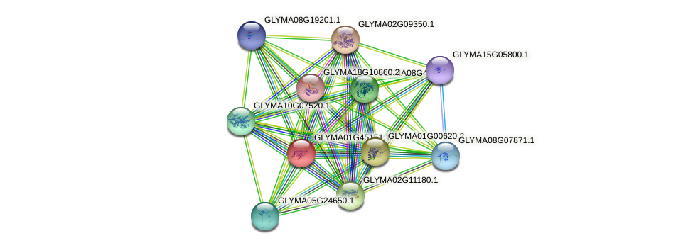 GLYMA01G45151.1 protein (Glycine max) - STRING interaction network