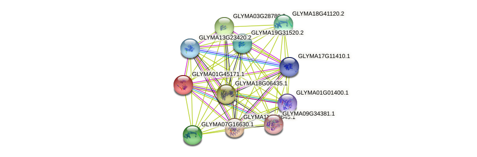 GLYMA01G45171.1 protein (Glycine max) - STRING interaction network