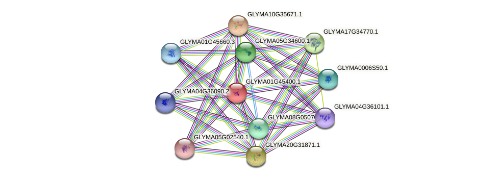 GLYMA01G45400.1 protein (Glycine max) - STRING interaction network