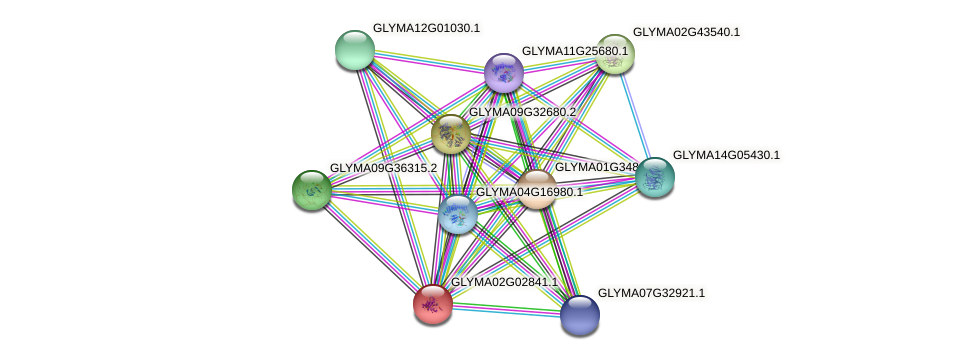 GLYMA02G02841.1 protein (Glycine max) - STRING interaction network