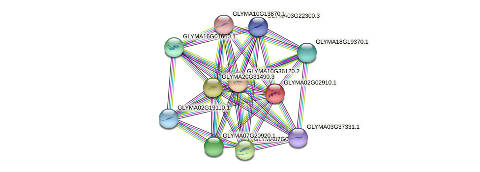 GLYMA02G02910.1 protein (Glycine max) - STRING interaction network
