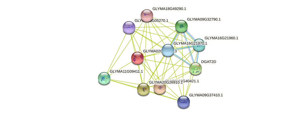 GLYMA02G04210.2 protein (Glycine max) - STRING interaction network