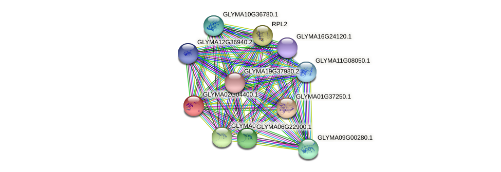 GLYMA02G04400.1 protein (Glycine max) - STRING interaction network