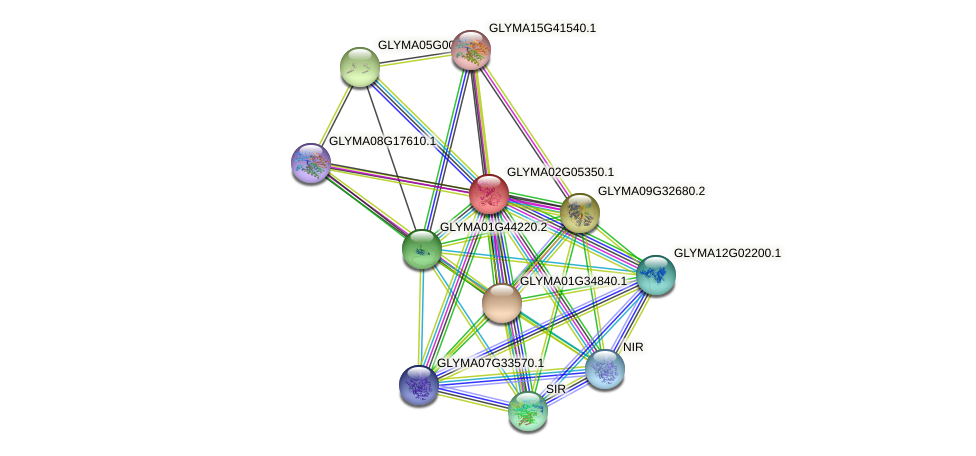 GLYMA02G05350.1 protein (Glycine max) - STRING interaction network