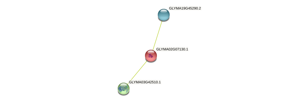 GLYMA02G07130.1 protein (Glycine max) - STRING interaction network