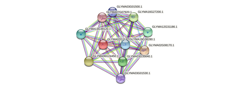 GLYMA02G11320.1 protein (Glycine max) - STRING interaction network