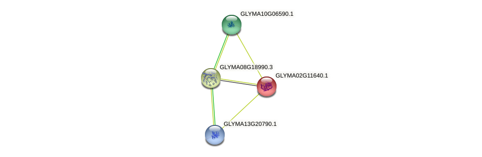GLYMA02G11640.1 protein (Glycine max) - STRING interaction network