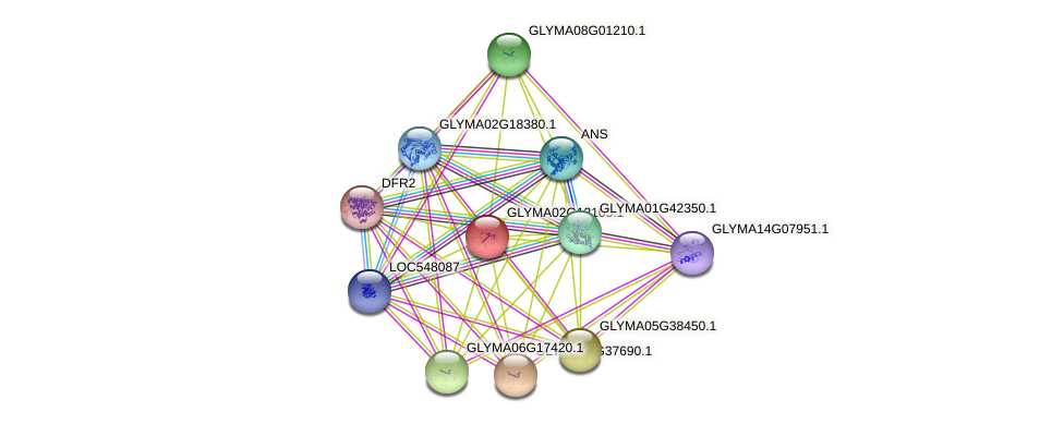 GLYMA02G12105.1 protein (Glycine max) - STRING interaction network