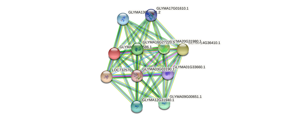 GLYMA02G12586.1 protein (Glycine max) - STRING interaction network