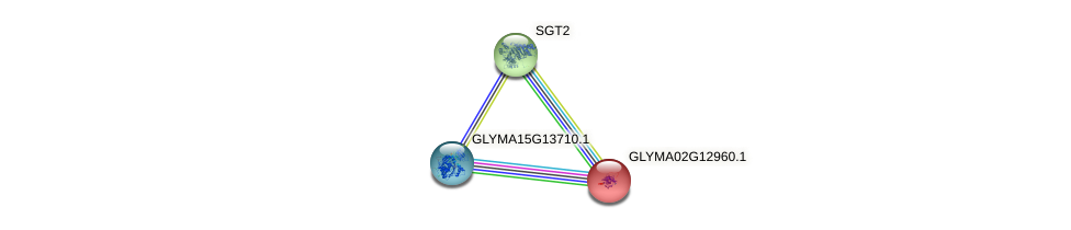 GLYMA02G12960.1 protein (Glycine max) - STRING interaction network