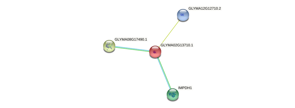 GLYMA02G13710.1 protein (Glycine max) - STRING interaction network